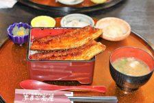 Amago lunch