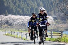 Lake Biwa cycling sakura season
