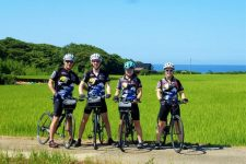 Sado Island bike tour rice field
