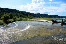 Tama River Hamura water intake weir